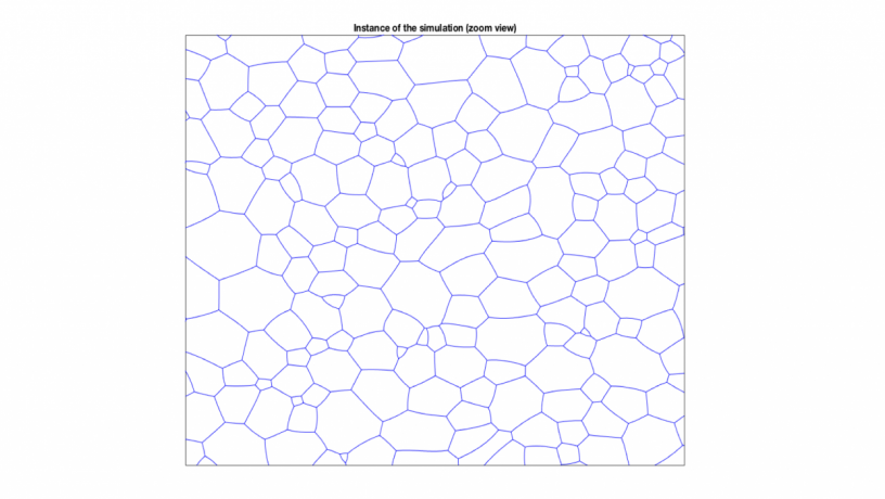 Figure 2: microstructure from simulation: example of a time instance during the simulated evolution of a cellular (grain boundary) network.